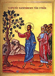 Jesus Curses the fig tree. Does the bible promote a death cult?